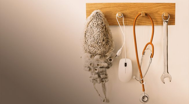Judges wig, mouse, stethoscope and spanner hanging on a rack