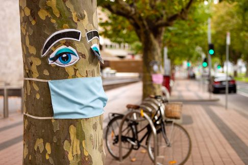 Tree wearing a face mask in Melbourne